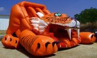 """Slide """"Tiger"""""""
